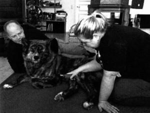 Hoku-akita, omistajansa Markus Niemi ja hoitaja Päivi Väkeväinen
